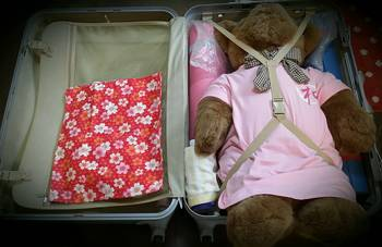 スーツケースの大五郎.jpg